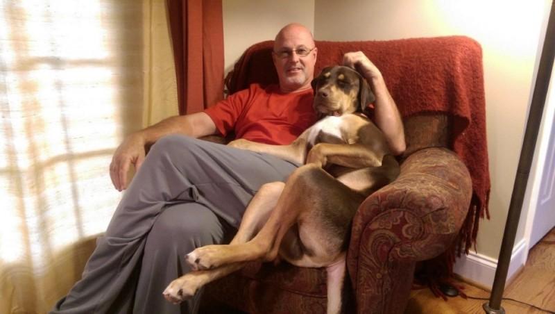 Herrchen und Hund auf Sofa