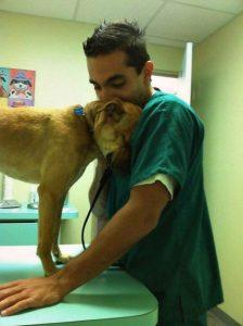 Hund und Arzt